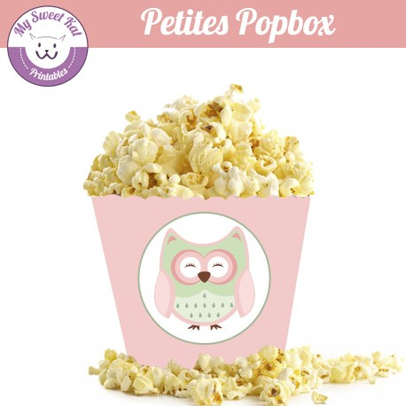 hibou - chouette- Petite popbox