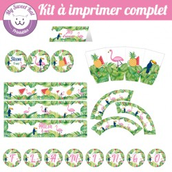 Tropical flamingo - Kit complet
