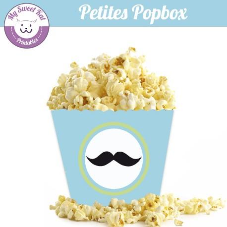 Moustache - Petite popbox