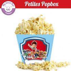 Pat patrouille - Petite popbox