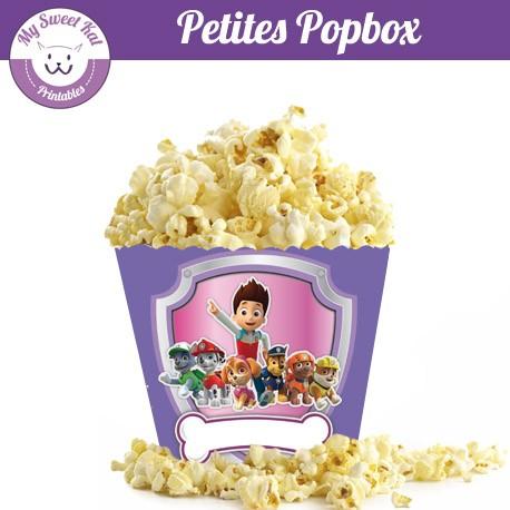Pat patrouille fille - Petite popbox